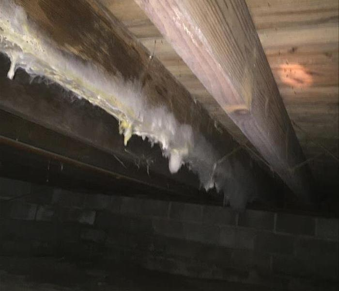 Crawlspace Mold Remediation in Phoenixville, PA Before