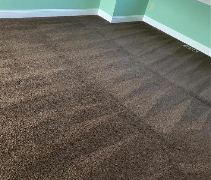 Carpet Cleaning in Chester Springs, PA