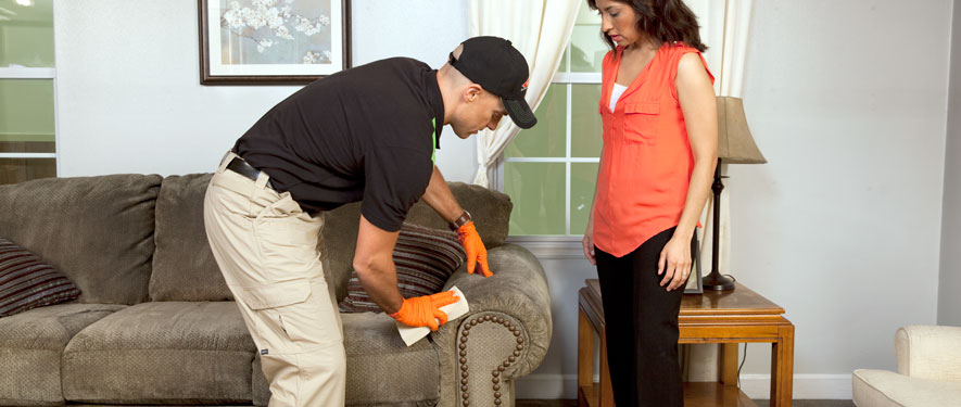 South Pottstown, PA carpet upholstery cleaning